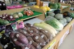 豊浦産季節のお野菜